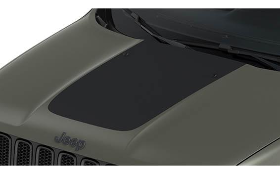Chrysler Renegade 31
