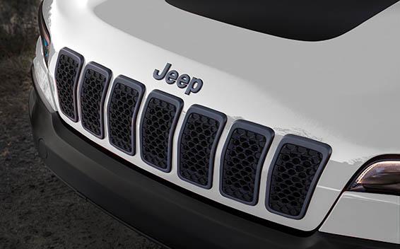 Chrysler Cherokee 13