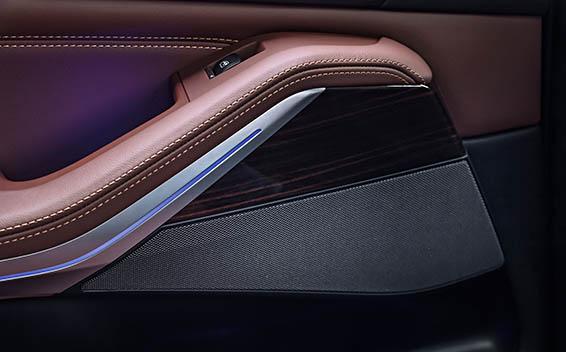 BMW X5 19
