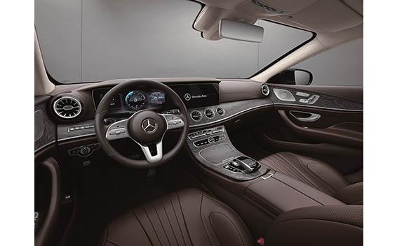 Mercedes-Benz Cls-Class 25
