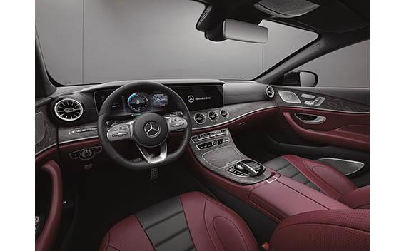 Mercedes-Benz Cls-Class 29