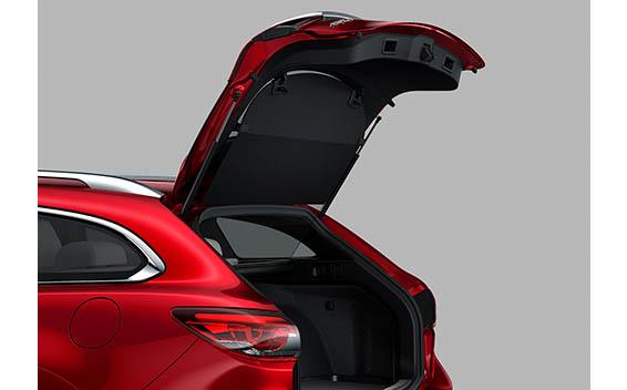 Mazda Atenza 33