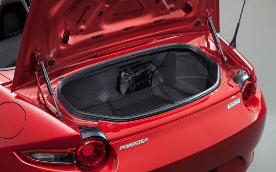 Mazda Roadster 17